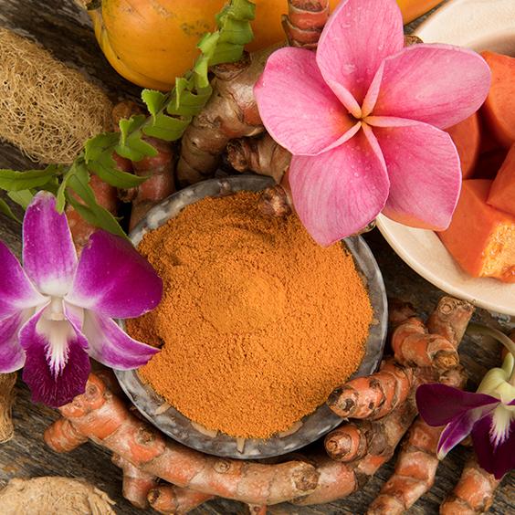 Herbs turmeric natural medicine